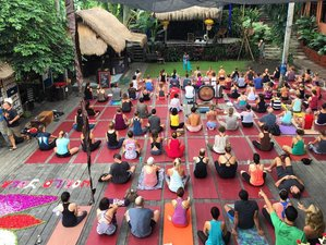 14 Days 100hr Yoga Therapeutics Teacher Training Bali