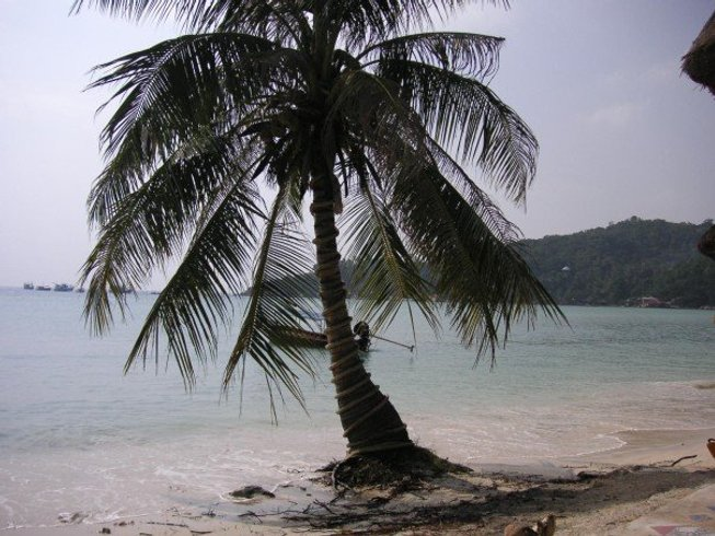 11 Days Yoga Retreat in Goa, India