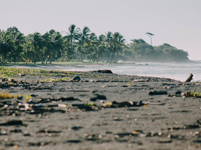 4 Days Family Costa Rica Surfing and Photography