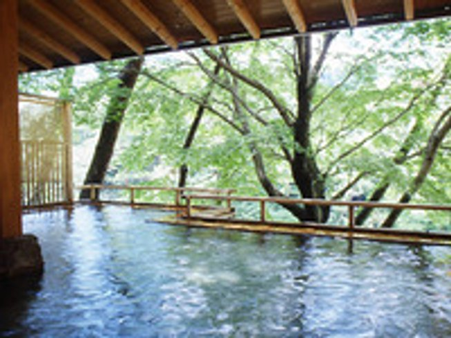 4 Days Hot Spring Yoga Retreat in Japan