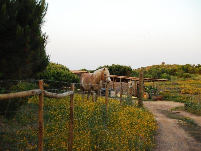 """6 jours en stage de yoga et méditation """"Vivre avec ce qui est"""" à Aljezur, Portugal"""