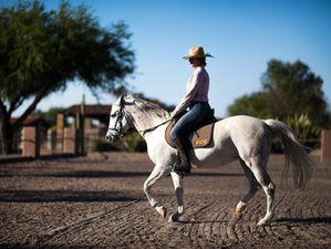 6 Day Relaxing Ranch Escape in San Miguel de Allende, Guanajuato