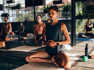 29 Days 200-Hour Vinyasa & Hatha Yoga Immersion and Teacher Training in Bali, Indonesia