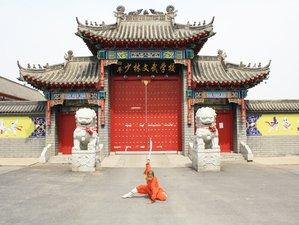 3 Months Tai Chi, Wing Chun & Shaolin Kung Fu Training in China