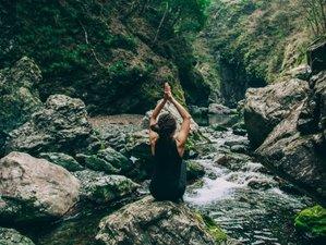 8 jours de stage de kundalini yoga, randonnée et detox à Ramelot, Wallonie