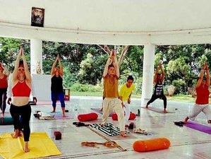 13 Tage Naturheilkunde Detox, Meditation und Yoga Retreat in Rishikesh, Indien