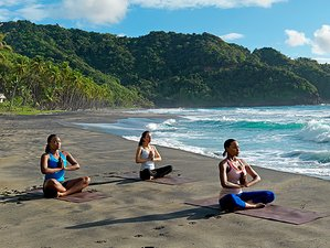 8 Days Wellness and Yoga Retreat Dominica