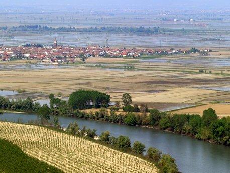 Province of Alessandria