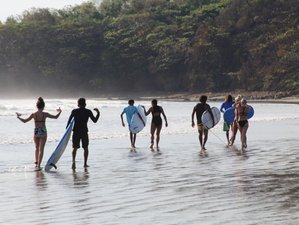 8 Days All Year Round Actually how to Learn Surf and Yoga Retreat in Playa Escameca, Nicaragua