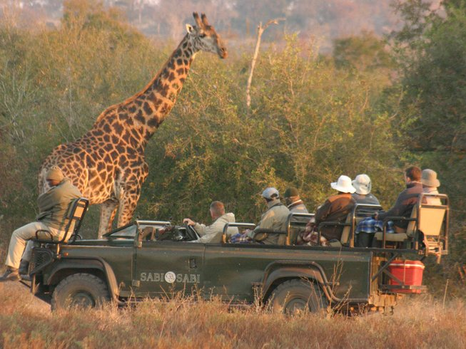 8 Days South Africa Safari and Tour