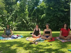 14 Days 200-Hour Yoga Teacher Training Course on Omadhoo, Maldives