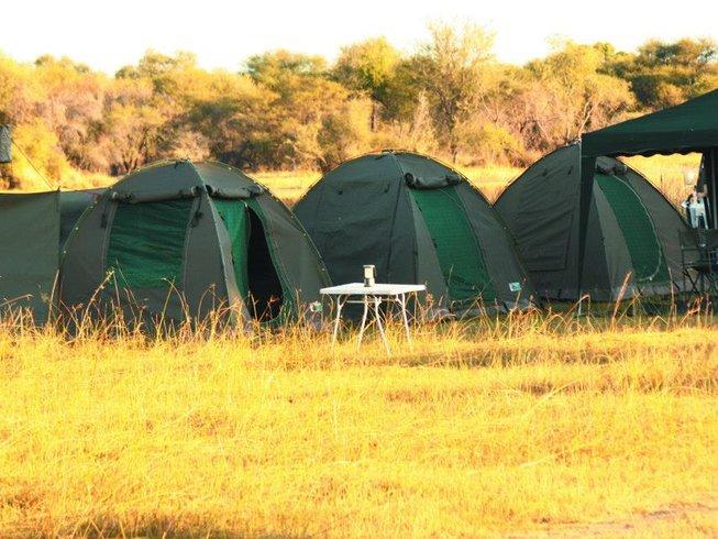 10 Days Guided Wildlife Safari Botswana