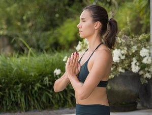 7 Days Exclusive Christmas Bliss Yoga and Meditation Retreat in Bali, Ubud