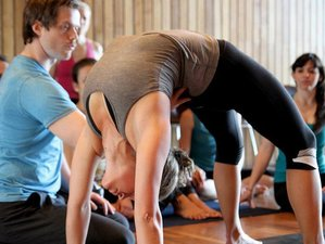 24 Days 200-Hour Intensive Yoga Teacher Training Bali