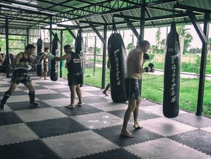 7 Days Muay Thai Training with Zero Distractions in a Serene Setting