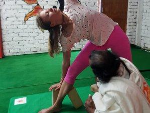 100-Hour Hatha Yoga Teacher Training Course in Dharamshala