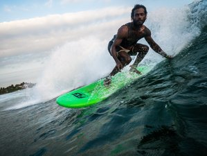 8 Day Surf Intense with Freedom Surf School in Weligama, Southern Province