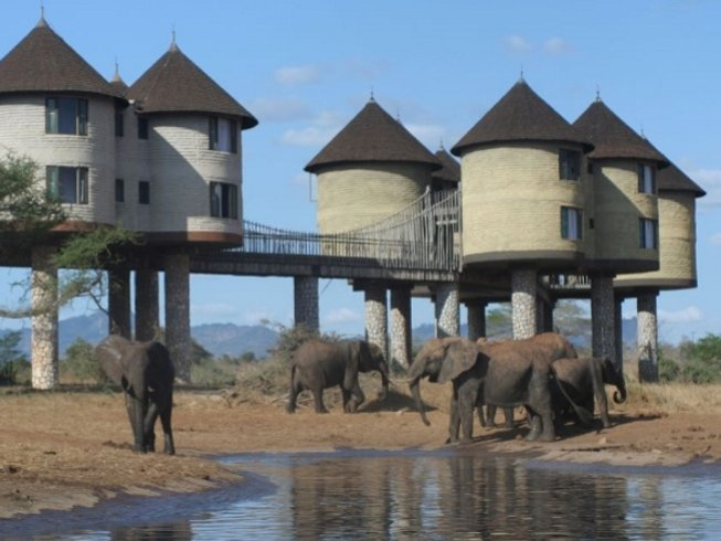 6 Days Road Safari in Kenya