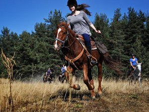 8 Days Orpheus Trail Horse Riding Tour in Bulgaria