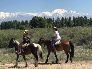 4 Day Gourmet Experience and Trail Riding Vacation in Uco Valley
