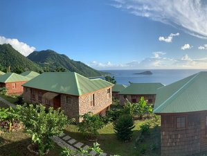8 Day Jungle Island Yoga Holiday in Dominica