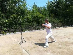7 Day One-on-One Online Kung-Fu Training Course