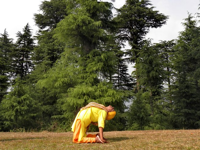 7 Days Wellness and Yoga Retreat in India