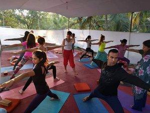 27 Day 300 hour Multi-style Yoga Teacher Training in Goa At Rishiguna Yogashala