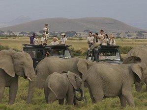 5 Days Exciting Camping Safari in Tanzania