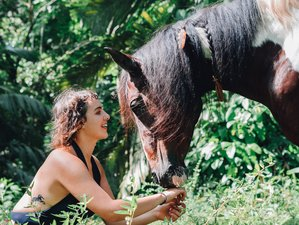 8 Days of Empowering Self Discovery with Horses Yoga Holiday in Limon, Costa Rica
