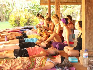 14 Days Ashtanga Yoga Retreat in Thailand