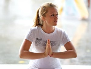 8 Day Get into Your True Self: Unforgettable Yoga Holiday in Blaskogarbyggd