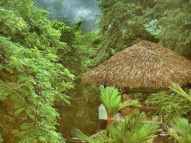 8 Days Women's Yoga Retreat in Costa Rica