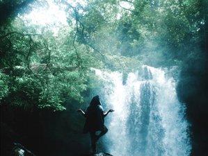 4 días de retiro de yoga y sanación ancestral en la Selva Valdiviana