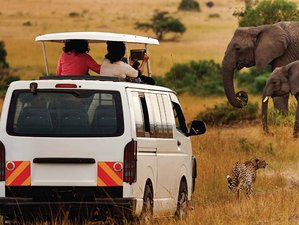 3 Days Adventure Tour and Meru National Park Private Safari in Kenya
