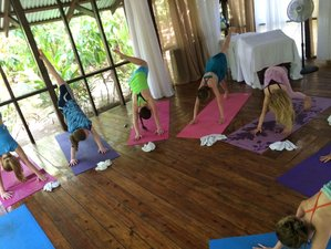 30 Days 200-Hour Yoga Teacher Training in Nicaragua
