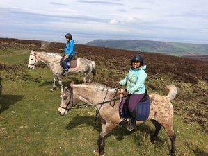 4 Days Fantastic Horse Riding Holiday in Exmoor National Park, UK