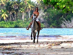 4 Day Horse Riding Holiday along the Beach for Beginners in Morro de São Paulo, Bahia