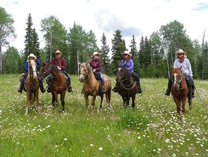 3 Days Unguided Trail Riding and Ranch Vacation in British Columbia, Canada