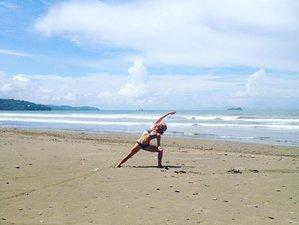 300-Stunden Selbstbestimmte Online Raja Yogalehrer Ausbildung für Fortgeschrittene