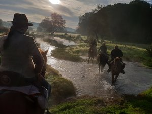 6 Day The Great Trail of Sierra Morena Horse Riding Holiday in Andalusia