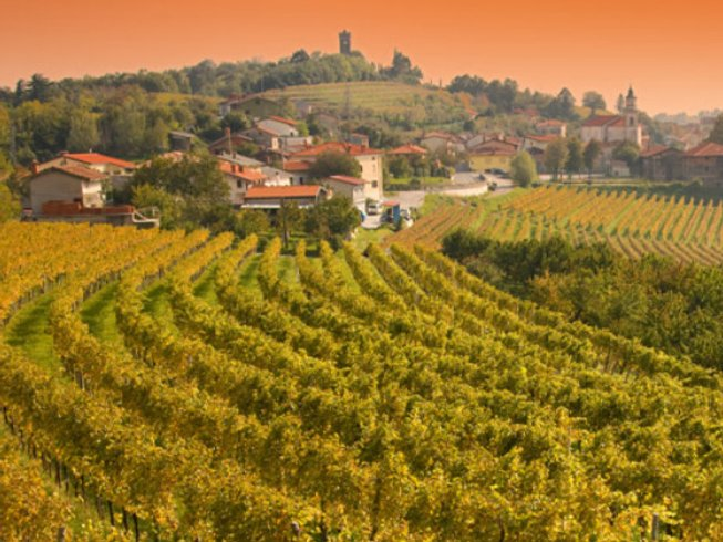 8 Days Cooking Vacations and Wine Tasting in Slovenia