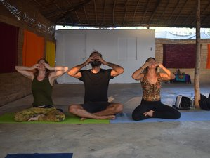 25 Day 200-Hour Yin Yoga Teacher Training Course in Goa