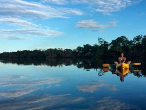 3 Day Exceptional Wildlife River Tour in Amazonas, Brazil