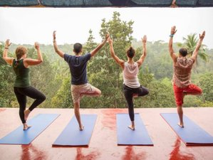 7 Days Detox and Yoga Retreat in Carrapateira, Portugal