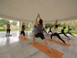 12 Day Yoga, Meditation and Body Purification Retreat in Rishikesh