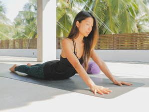 12-Daagse 100-urige Yin Yoga Docententraining in Nayarit, Mexico