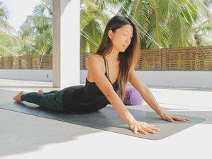 12 Tage 100-Stunden Yin Yogalehrer Ausbildung in Nayarit, Mexiko