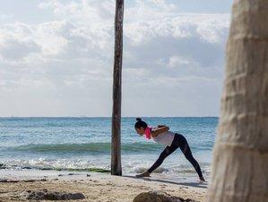 10 días de sanación y retiro de yoga en Quintana Roo, México