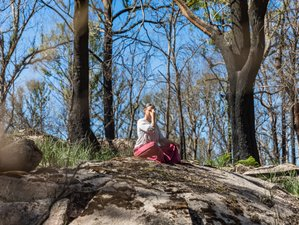 3 Day Weekend Wellbeing and Yoga Retreat in Ebor, NSW